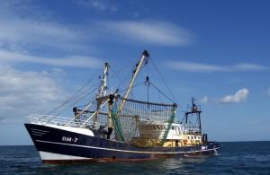 sea-1761912_1280